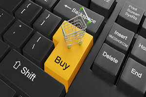 Payment Plan $100.00 Weekly Payment:Ecommerce